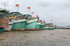 INN : Ca Mau s'efforce d'empêcher les activités de pêche illicite