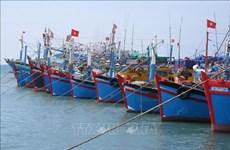 Pêche INN : le Vietnam poursuit l'objectif de développer durablement la pêche