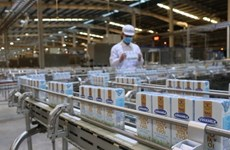 Vinamilk importera 1.000-1.200 vaches des États-Unis