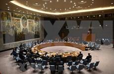 Conseil de sécurité : le Vietnam appelle à une coopération pour régler des questions en Syrie