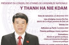 Président du conseil des ethnies de l'assemblée nationale Y Thanh Ha Nie Kdam
