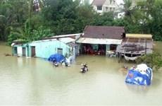 Les catastrophes naturelles ont coûté 508 milliards de dongs au premier semestre