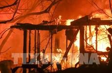 Il n'y a aucune information sur les victimes vietnamiennes de l'incendie de forêt en Californie