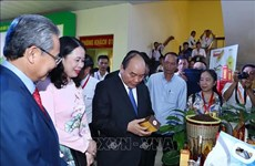 Le PM participe à la conférence de promotion des investissements à An Giang
