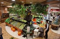 Nouvelle figure sur le marché vietnamien de la vente au détail