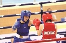 Des rings internationaux pour la boxe vietnamienne