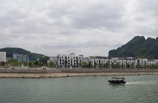 Le Vietnam possède un potentiel énorme sur le marché immobilier de villégiature