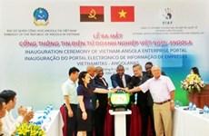 Lancement du portail électronique des entreprises Vietnam - Afrique