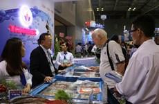 Les exportations de pieuvres vietnamiennes vers le Japon en croissance constante