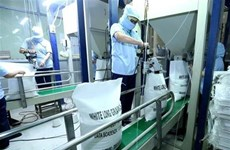 Perspectives pour le riz vietnamien en Chine