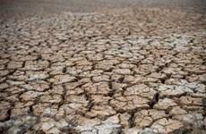 Le delta du Mékong sera confronté à une salinité plus sévère et à des sécheresses