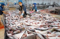 Les exportations de produits aquatiques vers la Chine pourraient se redresser au 2e semestre