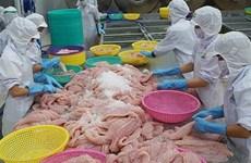 Le Vietnam, 1er fournisseur de poissons à chair blanche en Belgique