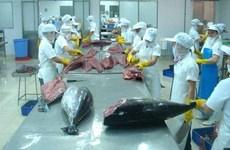 Bond des exportations nationales de thon vers la Grèce