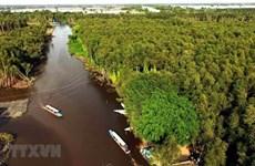 Changement climatique: Solutions pour réduire l'affaissement des terres dans le delta du Mékong