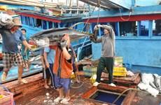 Le thon vietnamien présent dans près de 110 marchés du monde