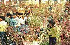 Le marché du Têt, une belle tradition des Vietnamiens