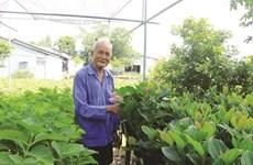 Têt : branle-bas de combat au village de fleurs de Sa Déc