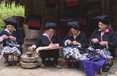 Hoà Binh: À la découverte de la broderie des Dao Tiên