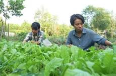 Deux femmes ingénieurs créent leur ferme bio