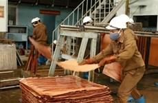 BAD: La croissance économique du Vietnam prévue à 4,8% en 2020