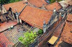 Visite du « paradis des vermicelles » et des maisons centenaires imprégnées de l'âme vietnamienne