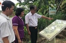 La route des cartes de Binh Duong