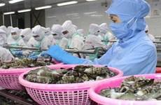 EVFTA: Exonération des taxes douanières sur 212 produits aquatiques vietnamiens à partir du 1er août