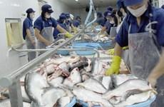 Pangasius: Hausse des exportations nationales à Singapour et au Royaume-Uni