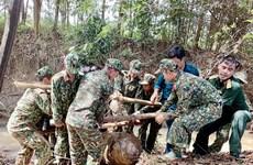 Khanh Hoà accord neuf milliards de dongs aux opérations de déminage