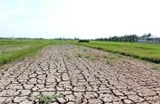 Dérèglement climatique: plan pour rehausser la résilience et l'adaptation du Vietnam