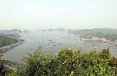 La réserve mondiale de biosphère de Cat Ba devient une destination attrayante