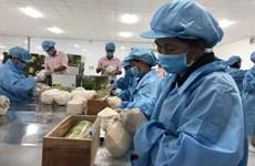 Les exportations vietnamiennes vers l'UE atteignent 3,8 milliards de dollars en août