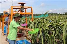 Deux localités de Tien Giang satisfont aux normes de la Nouvelle Ruralité