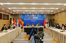 Le Vietnam et le Japon coprésident la téléconférence AFCDM + 3