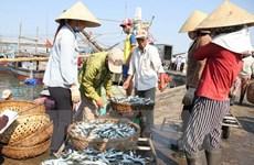 A Quang Tri, les pêcheurs sinistrés reçoient des indemnités avant le Têt