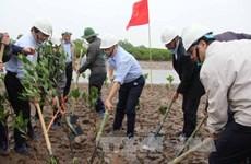 Mieux gérer les zones humides pour prévenir les risques de catastrophes