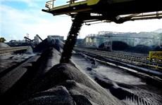 Le Vietnam importe de plus en plus de charbon indonésien