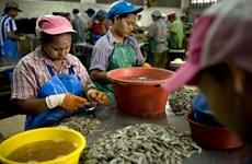 La Thaïlande durcit les règles contre les travailleurs étrangers en situation irrégulière