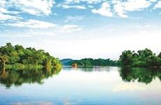 L'intarissable marais d'Ao Châu, une ode à la nature