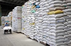 Le Vietnam exportera 4 millions de tonnes de riz en 2030