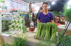 Au Centre, le bon filon des plantations d'asperges à Ninh Thuân