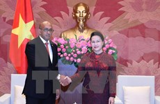 La présidente de l'AN reçoit l'ambassadeur cubain au Vietnam