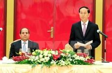 Le président Trân Dai Quang affirme les liens étroits entre le Vietnam et l'Égypte