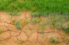 Environnement : le Vietnam partage ses politiques lors d'un sommet régional