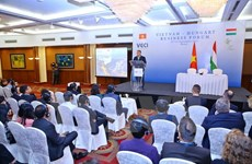 Forum d'entreprises Vietnam-Hongrie à Hanoi