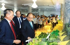 Hâu Giang appelée à créer les meilleures conditions aux investisseurs