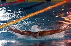 Dix nouveaux records établis lors du championnat de natation 2017