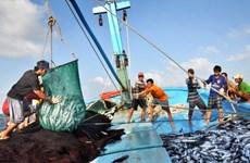 L'UE avance des recommandations sur la pêche INN