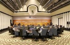 Ouverture de la 25e Conférence des dirigeants économiques de l'APEC